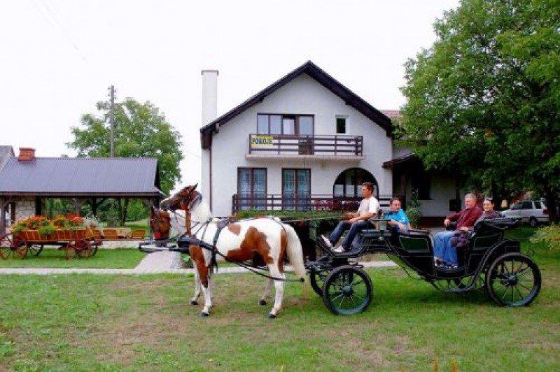zdjęcie bryczki, Kazimierz Dolny
