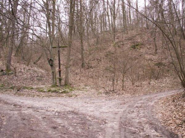 zdjęcia Kazimierza Dolnego (Mięćmierz)