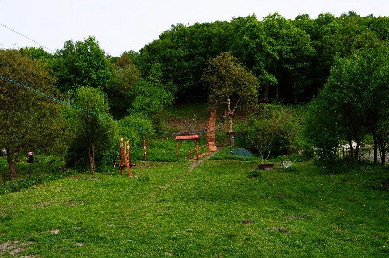 zdjęcie parku linowego