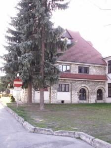 Koszczyc-Witkiewicz