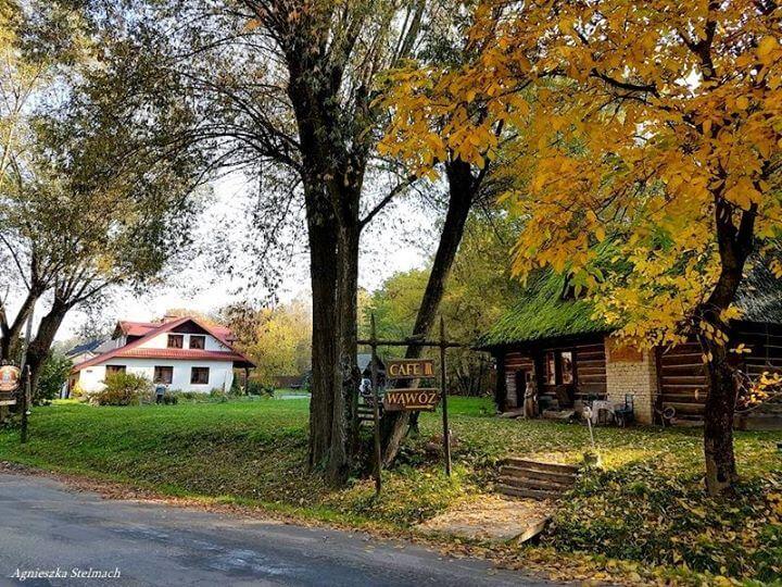 Zapraszam na jesienną przechadzkę do Siedliska Lubicz nad potokiem Grodarz :) Na terenie sielskiej…