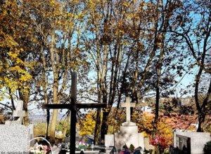 Cmentarz parafialny św. Jana w Kazimierzu Dolnym jest uznawany za jedną z najpiękniejszych nekropolii…