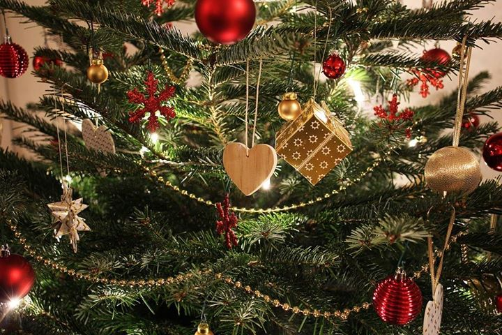 Kazimierz Dolny życzy wszystkim zdrowych, spokojnych i pięknych świąt Bożego Narodzenia! Czekamy z wigilijną…
